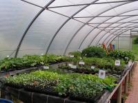 Gartenbau1 (2)